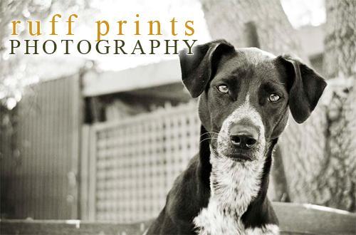Ruff Prints Photography