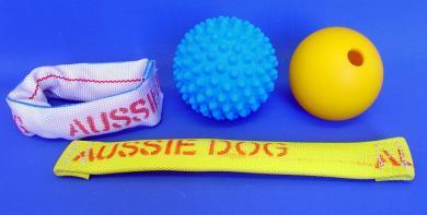 Dog Acessories