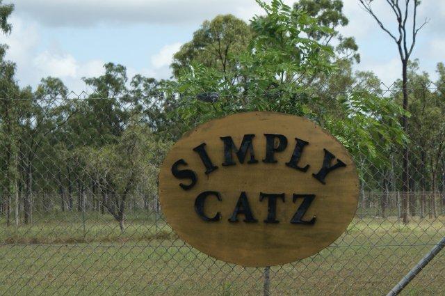 Simply Catz