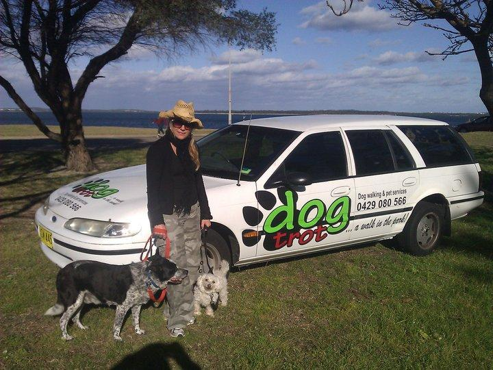Maree, Dogs and Car