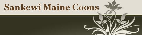 Sankewi Maine Coons
