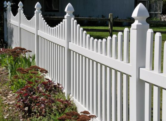 Fence Designs by Renovation Rescue