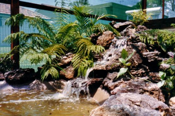 Water Feature Ideas by Artscape Landscapes