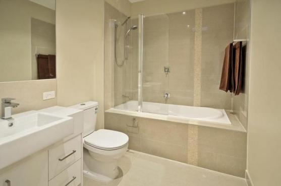 Bath shower combo design ideas get inspired by photos of for Restroom design pictures
