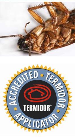 Termite Inspections Brisbane Gold Coast Logan And