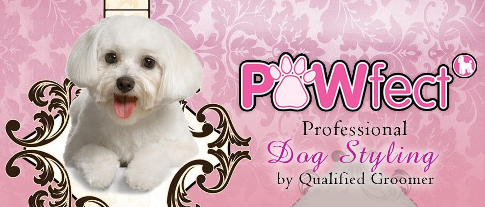 Pawfect Dog Grooming