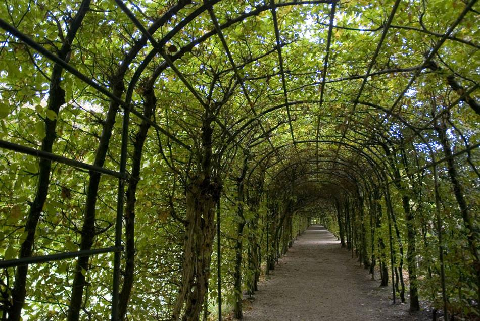 Like it add it to your inspiration board for Garden archway designs