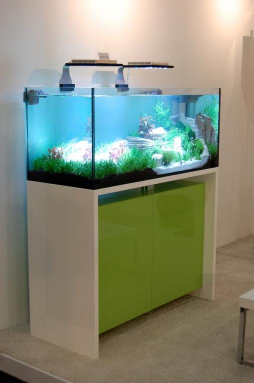 Shelf Aquariums