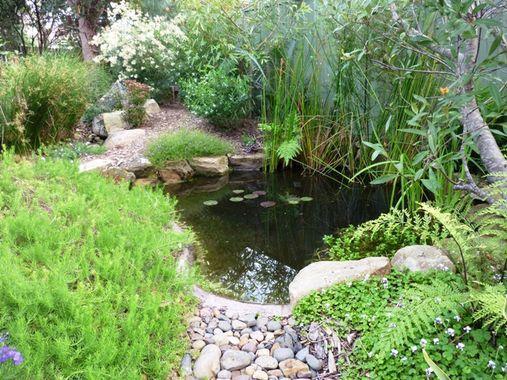 Water features inspiration creative nature landscape for Garden features australia