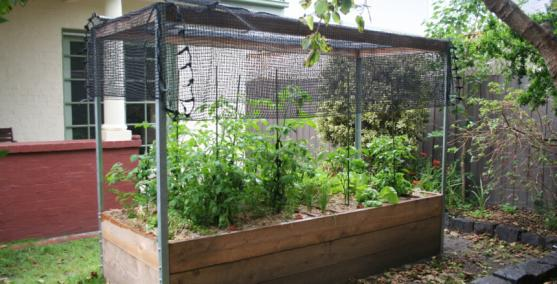 Vegetable Garden Designs by Kitchen Farmer