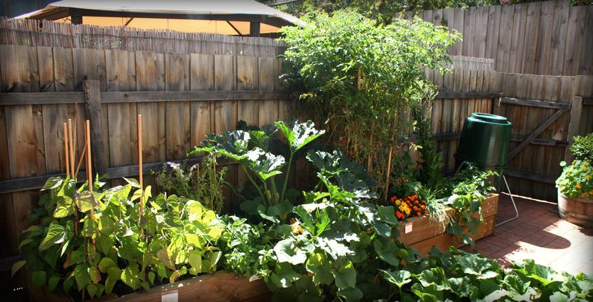 Kitchen Farmer Raised Garden Bed Materials A Raised Garden Bed