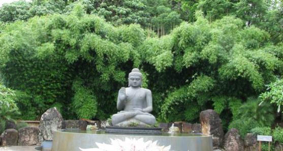 Garden Design Ideas by Bamboo Wholesale