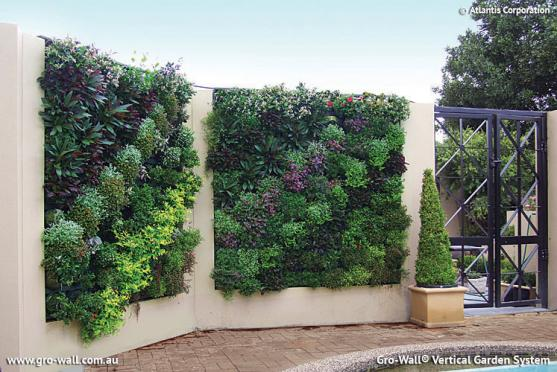Vertical garden design ideas get inspired by photos of vertical gardens from australian Kitchen garden design australia