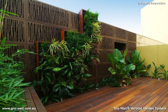Vertical garden design ideas get inspired by photos of for Courtyard garden designs australia