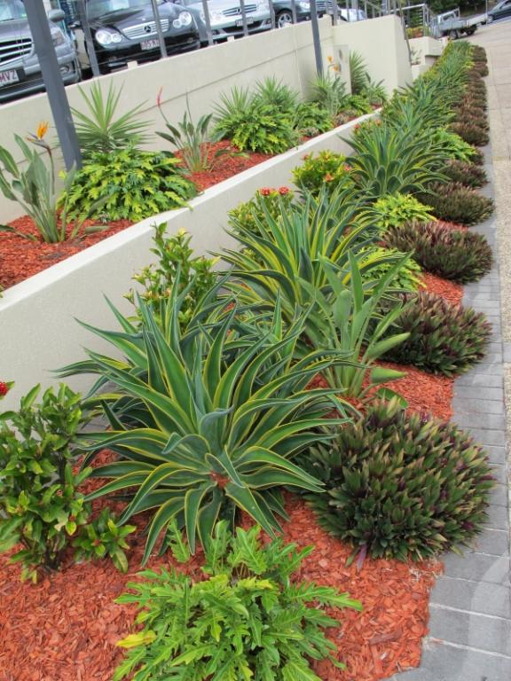 Scenic scapes landscaping kenmore hills queensland for Qld garden design ideas