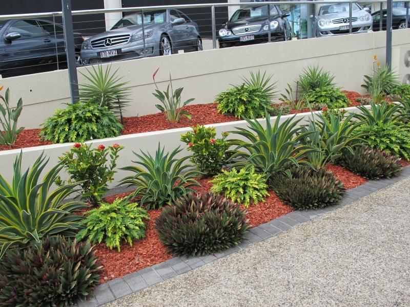 turf and gardens - galleries