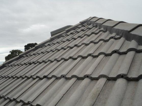 Roof Designs by The Roof Dentist