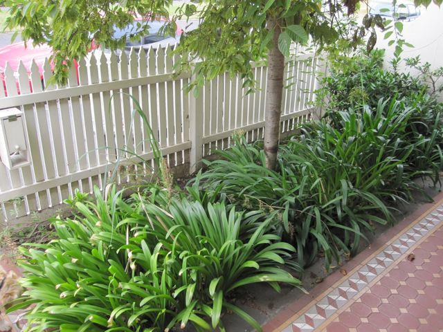 quick mini garden makeover adelaide landscape pictures of