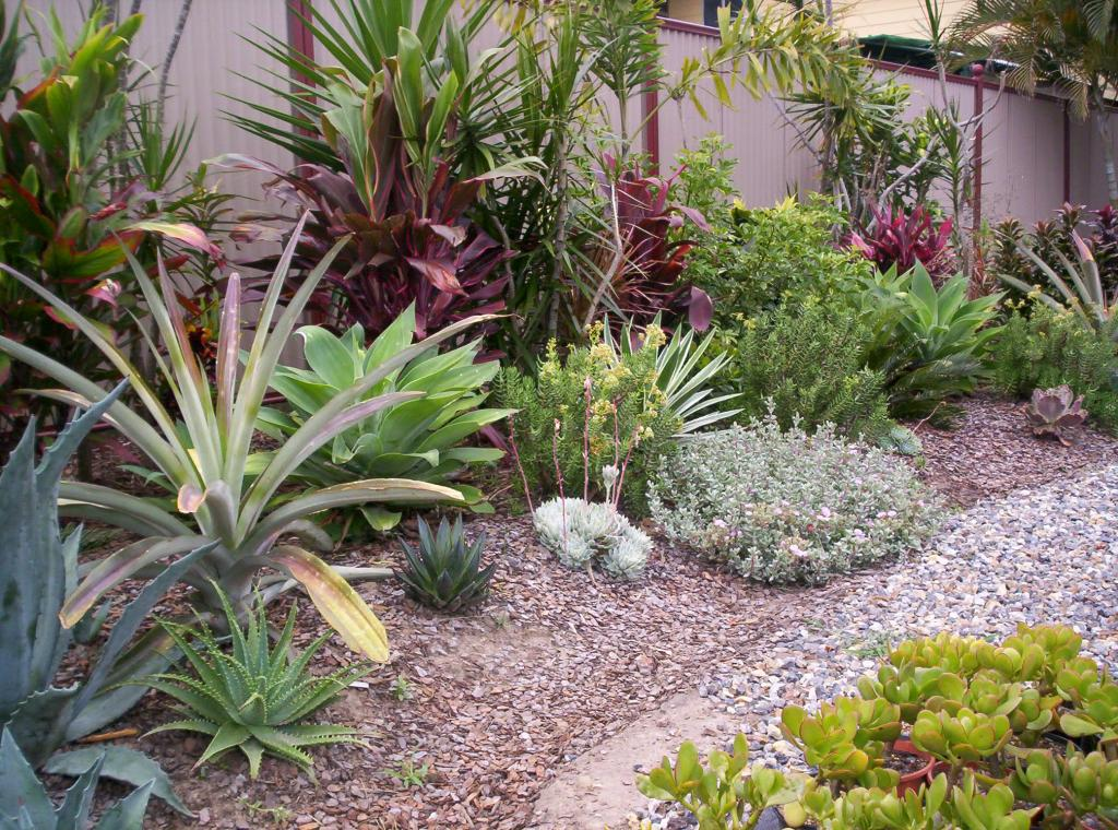 Plantspec pty ltd landscape design construction for Gardening australia