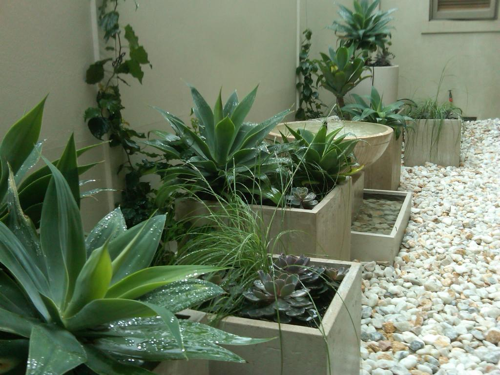 Style Ideas Gardens Brighton Internal Courtyard Prue
