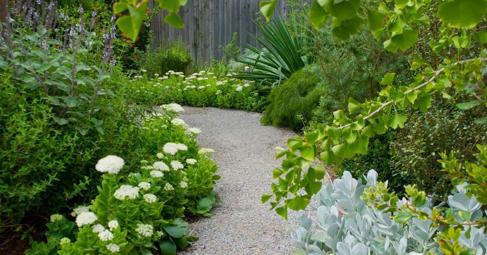 Sibilla's Foliage Garden