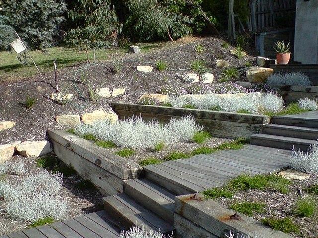 Landscape Architecture & Gardening