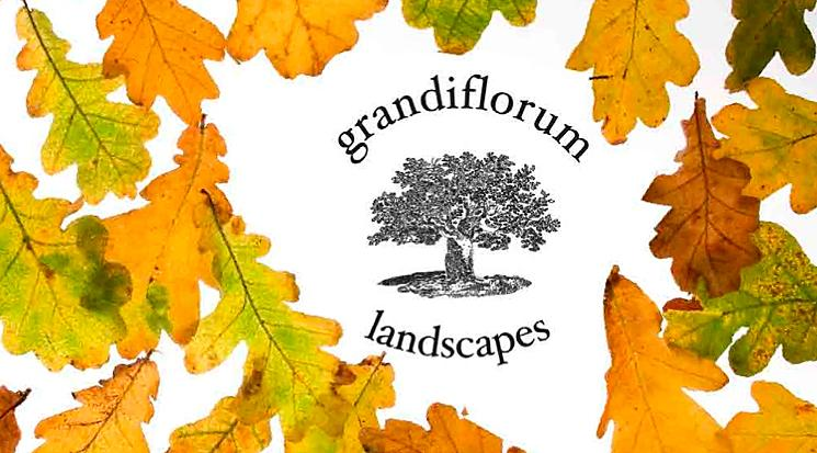 Grandiflorum Landscapes