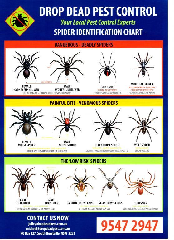 Drop Dead Pest Control St George St George Area
