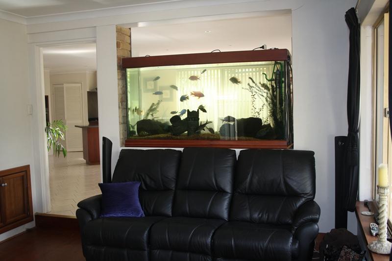 Indoor Aquariums