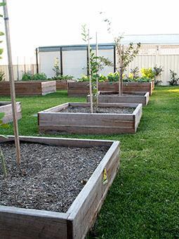 Tookoo landscape design we service adelaide adelaide for Landscaping services adelaide