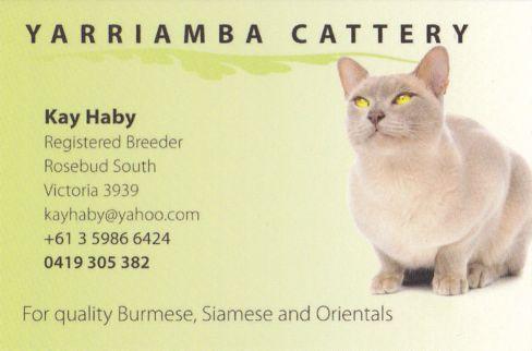 Yarriamba Burmese & Oriental