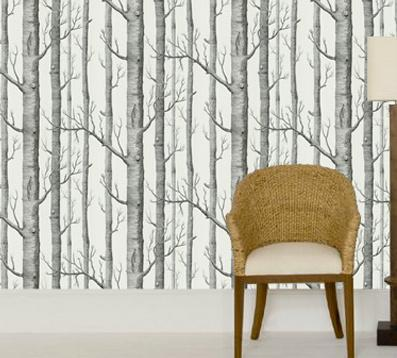 Wallpaper Design Ideas By Annandale Paint U0026 Wallpaper