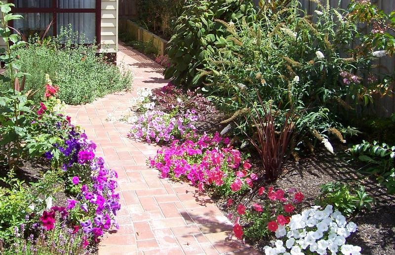 Ashley S Garden Creations Melbourne Eastern Suburbs