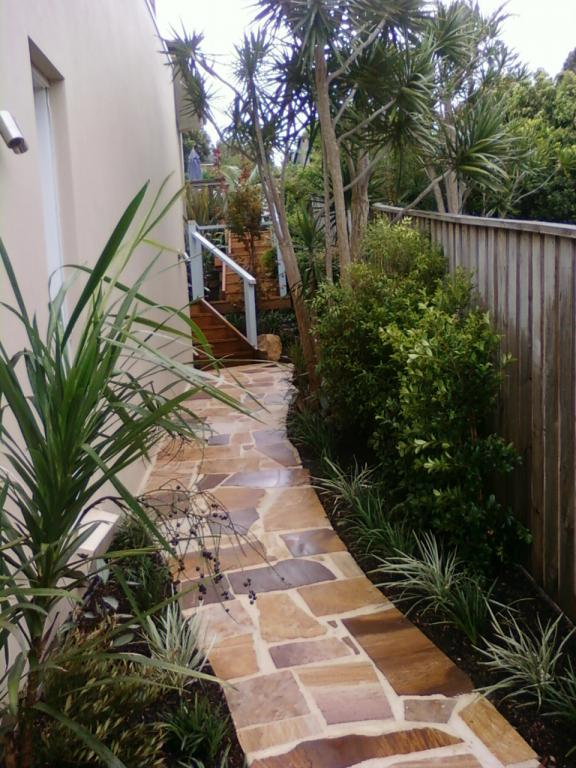 Palm Landscapes Northern Beaches And North Shore