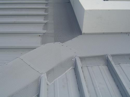 Gutter Protection Sunshine Coast Sunshine Coast To Gold