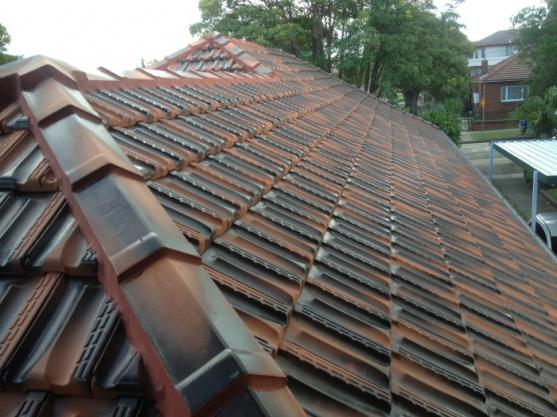 Roof Tile Designs  by Rite Roofing Pty Ltd
