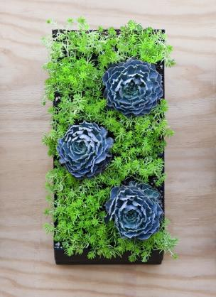 Vertical Garden Design Ideas by Luscious Living Spaces