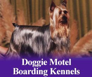 Doggie Motel Boarding Kennels