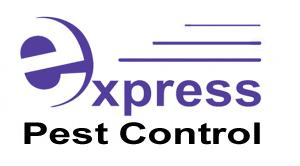 Express pest control booragoon 4 reviews for Gardening express reviews