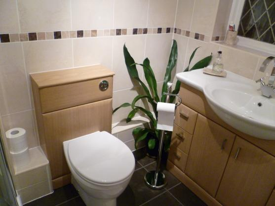 Toilet Ideas by Bathrooms4u