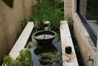 Pond Renovation - Before & After