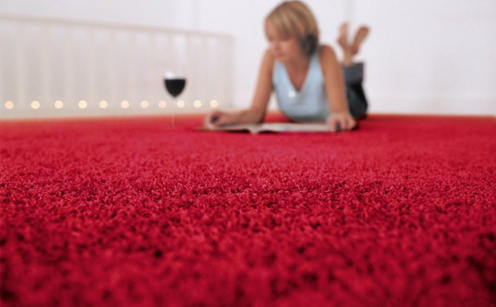 Encore Carpet Professionals Gold Coast And Brisbane 7