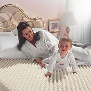 Rapid Dry Carpet Cleaning SHOALHAVEN AREA WES OR