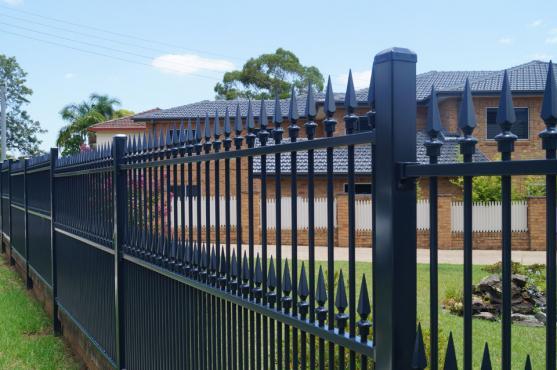 Wrought Iron Gates by Daniel Menolotto Fencing