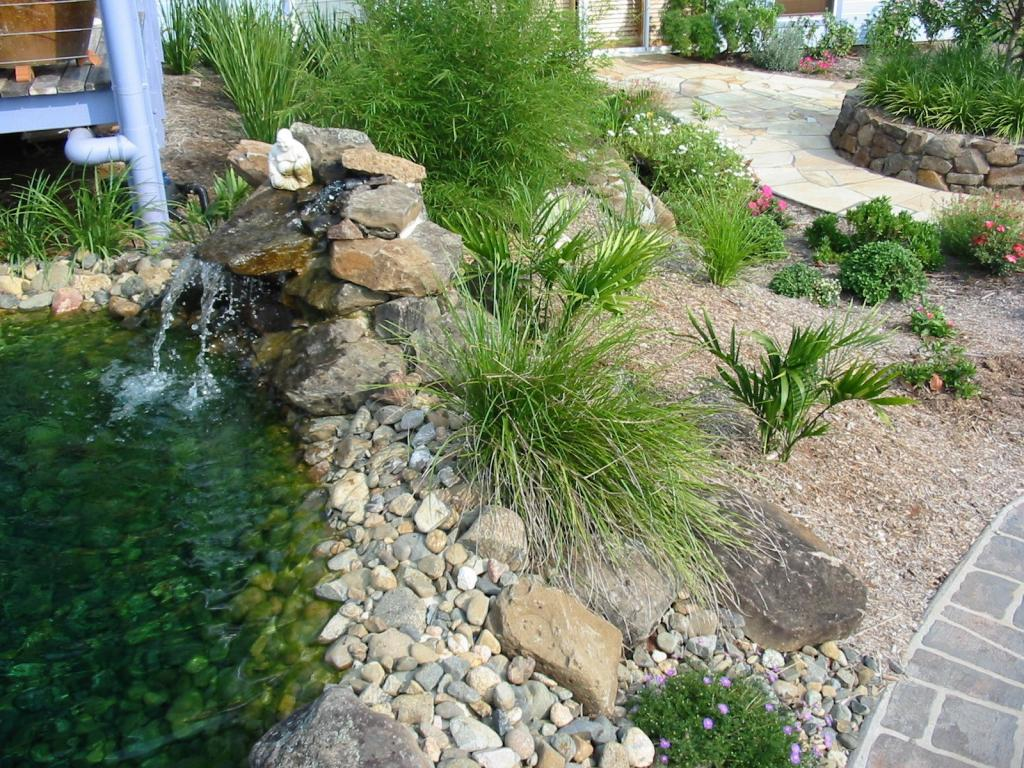Cost guide to building your own garden pond for Build your own pond
