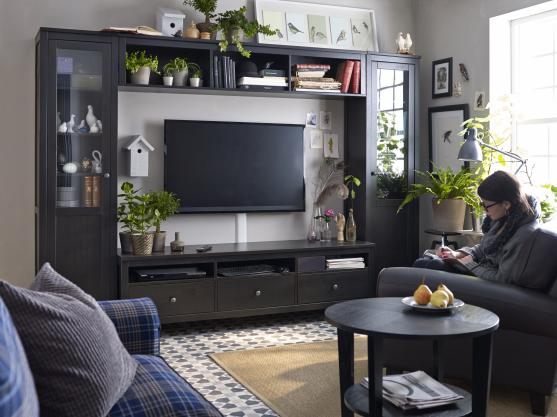 Entertainment unit design ideas get inspired by photos for Sala de estar ikea