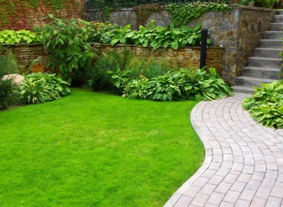 Garden Edging Ideas by Sams Garden Design