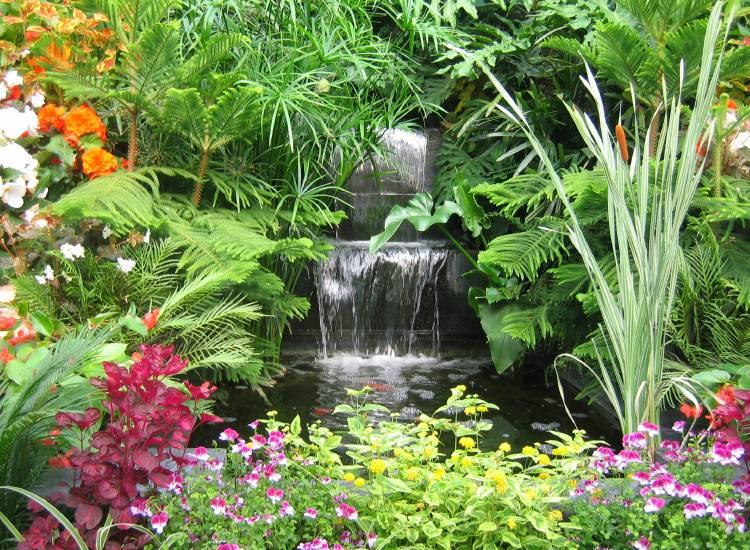 Cost guide to building your own garden pond for Garden pond do you need a pump