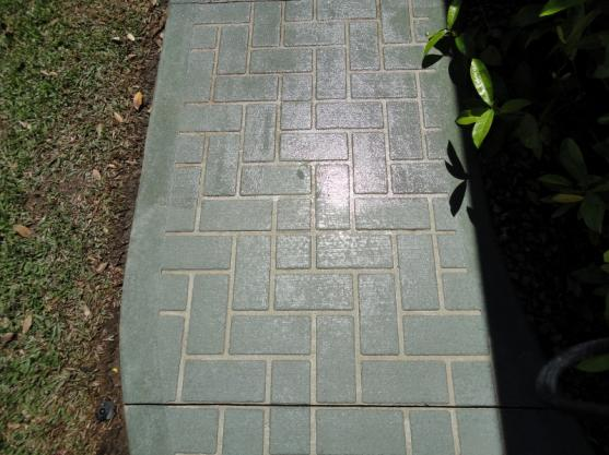 Concrete Resurfacing Ideas by Townsville Spray Pave & Stencilling