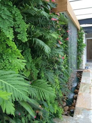 Vertical Garden Design Ideas by Sunshine Living Landscapes